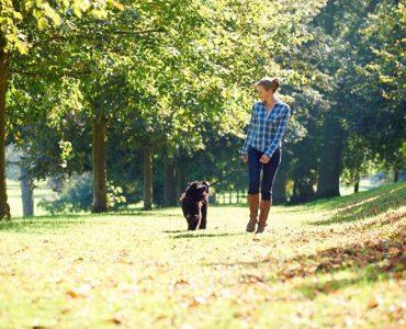 Dar un paseo al aire libre y bajo el sol para obtener serotonina