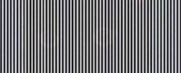 Ilusión óptica mover la cabeza