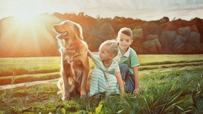 Niños jugando con su perro