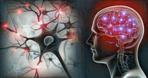 Qué son las neurociencias