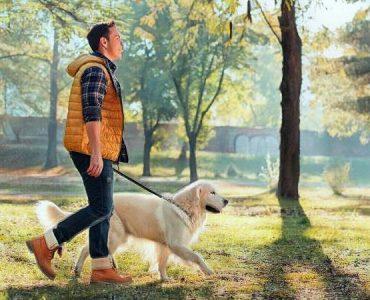 Caminando en el parque para promover la salud mental