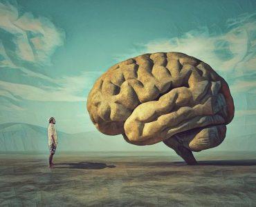 Entendiendo la psicología evolutiva