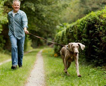 Los efectos de la actividad física sobre la ansiedad y la neurosis