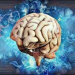 Entendiendo los conceptos de la psicofarmacología