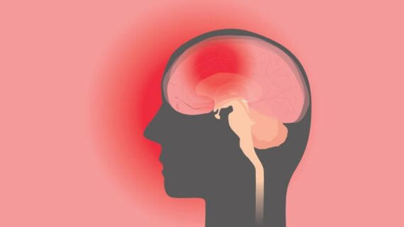 Los efectos de la publicidad sobre el cerebro