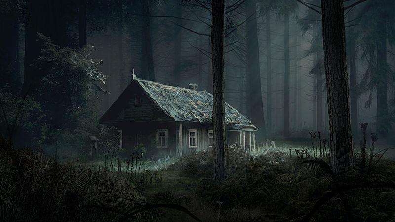 Una cabaña en medio de la neblina